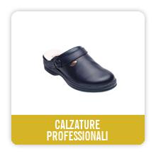 calzatureProf_quadro